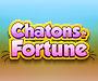 Chatons de la Fortune